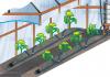 Система капельного автополива в теплице – хороший урожай на долгие годы