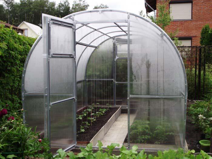 Растения в арочной теплице  будут получать большое количество света, а зимой на крыше сооружения не будет скапливаться снег