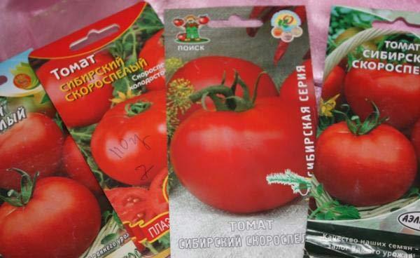 Одни ранние сорта томатов отлично чувствуют себя в открытом грунте другие могут расти только в помещении