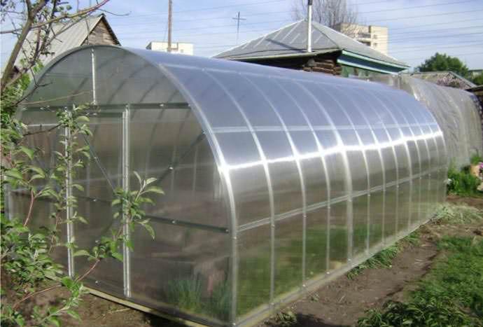Поликарбонат – оптимальный вариант для строительства теплицы