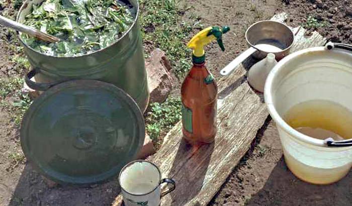 Чтобы приготовить настой для опрыскивания самостоятельно, понадобятся емкости различного размера, ингредиенты для смеси и вода