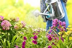 Лунный календарь садовода и огородника на июль 2016 года