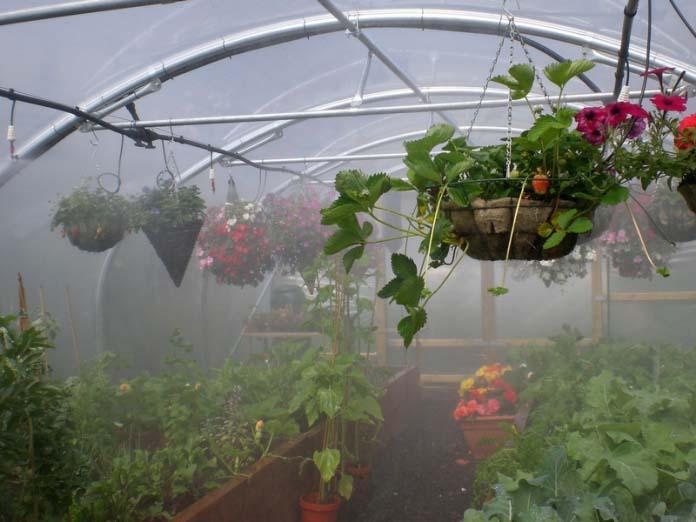Автополив дождеванием основан на подаче воды на культивируемые растения сверху