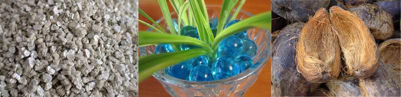 Гравий, гидрогель, кокосовое волокно можно использовать в качестве субстрата