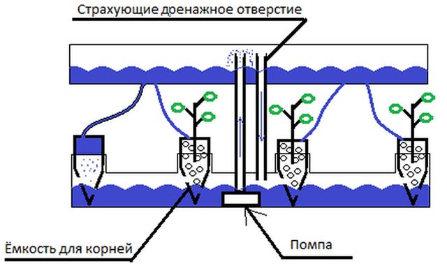 Универсальная конструкция для выращивания зелени в комнатных условиях изготавливается в соответствии схеме