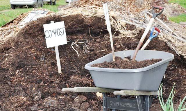 Применение компоста помогает осуществить оздоровление почвы в течение пяти лет