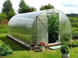 Теплицы из поликарбоната часто встречаются на садовых участках