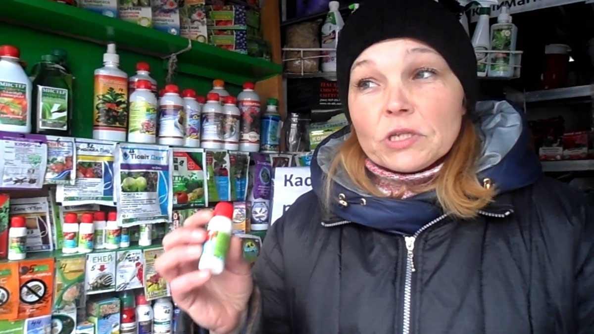 Широкий выбор препаратов от фитофтороза поможет огородникам уберечь урожай от гибели