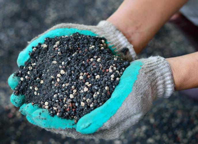Органические удобрения необходимо вносить под плодовые деревья каждые три года