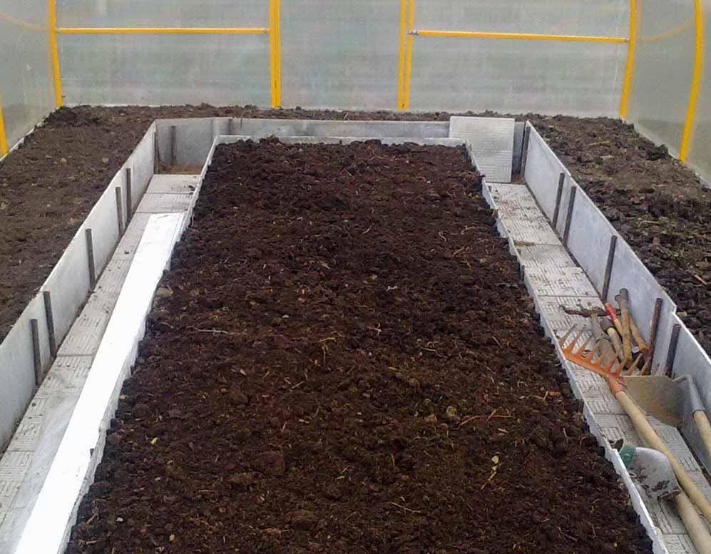 Грунт в теплицах и парниках должен быть более плодородным, в отличие от земли на открытом участке