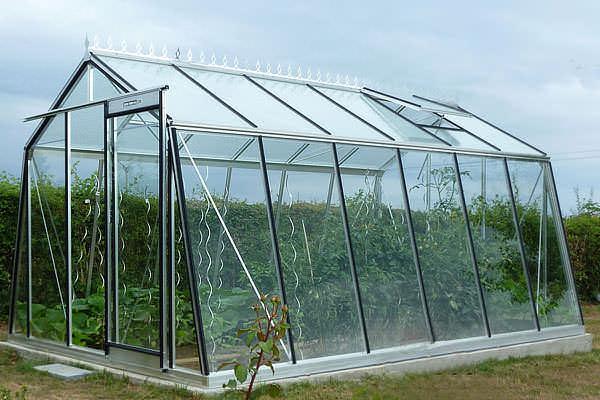 Конструкция строения дает возможность растениям получать оптимальное количество света