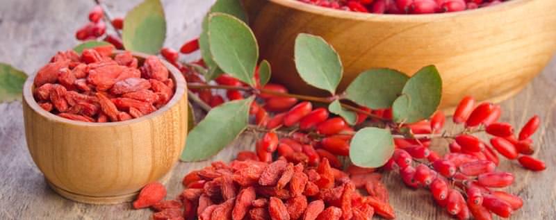 По своему составу ягоды барбариса занимают одно из первых мест в ряду лекарственных растений