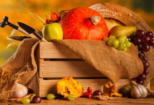 С наступлением осени подходит к завершению дачный сезон