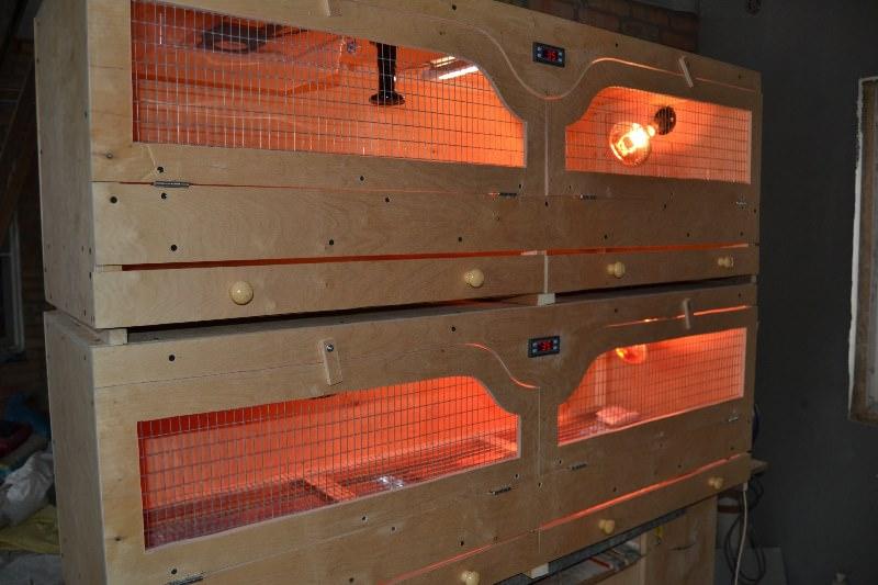 Сделать домашний инкубатор своими руками нужно с учетом вентиляционных правил