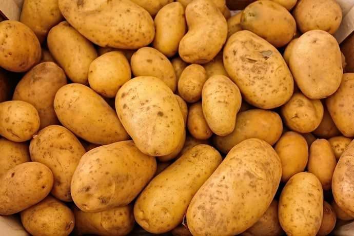 Картофель – один из самых любимых овощей среди россиян