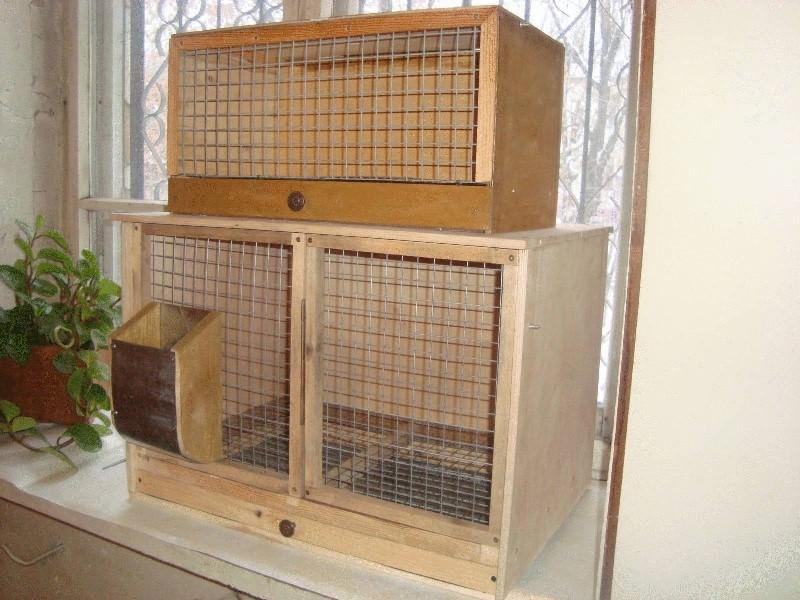 Кролик должен свободно передвигаться по домику, размеры сооружения должны быть минимум в 4 раза больше самого зверька
