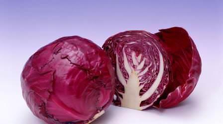 Краснокочанная капуста – это сортовая разновидность обыкновенной белокочанной капусты