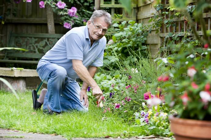 От фаз Луны зависит благополучие и успех не только в садоводческих делах, но и в жизненных ситуациях в целом