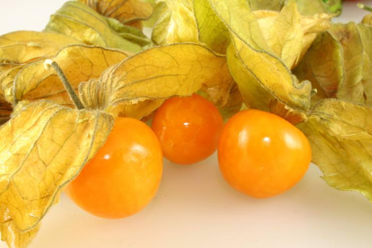 Сорт фезалиса Королек представляет собой плоды, используемые для изготовления десертов и консервов