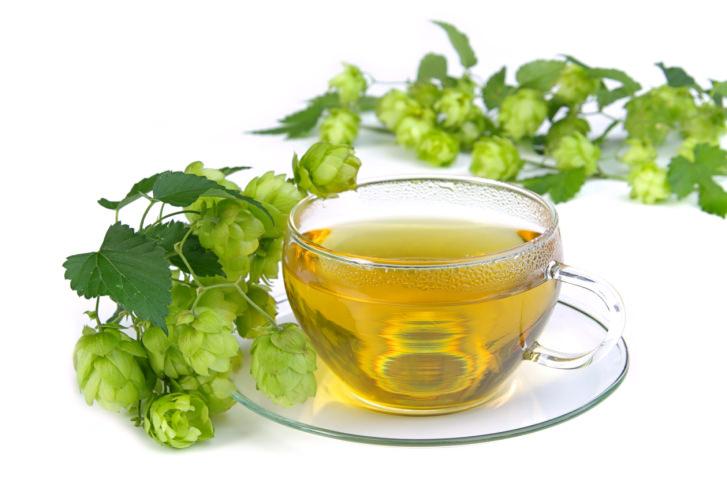 Чай с шишками хмеля является натуральным лечебным настоем
