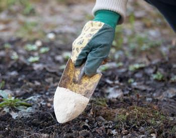 Известковать землю можно несколькими способами