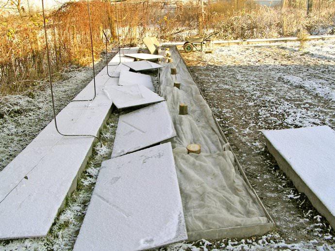 Сроки укрытия клематисов ограничены и ориентироваться в этом деле следует на температуру воздуха в вашем регионе
