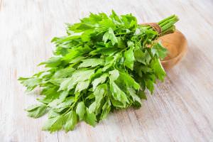 Любисток — это прославленное в народной медицине растение