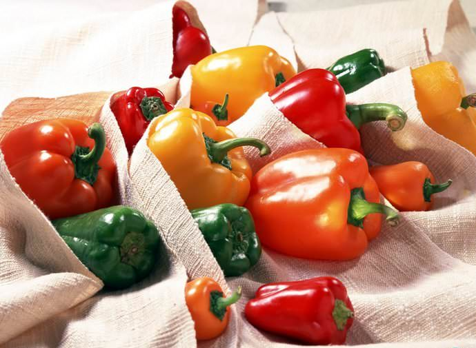 Находясь в холоде, сладкий перец долго сохраняет свежесть, однако, при попадании солнечных лучей он начинает портиться