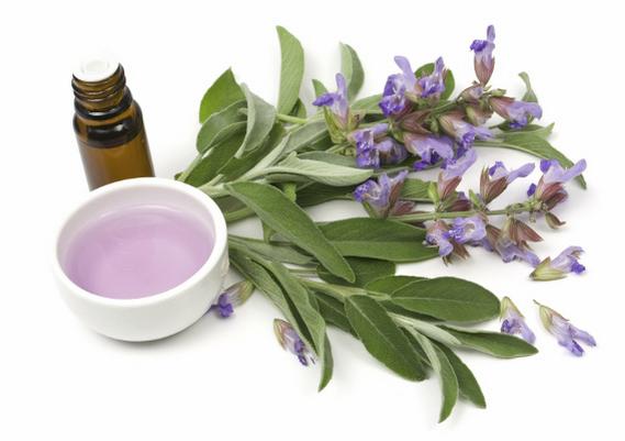 Лекарственные свойства шалфейного масла используют для профилактики и лечения болезней респираторной системы