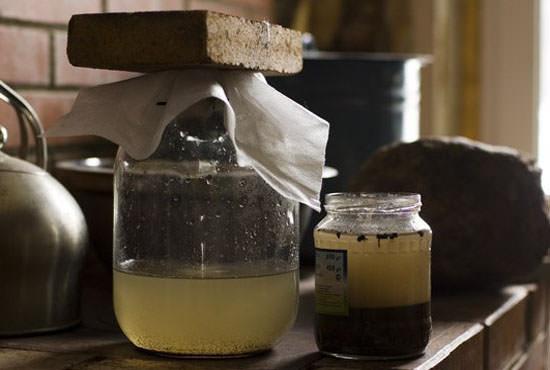 Приготовленный зольный раствор нужно настоять в течение суток, а для подкормки литр настоя разводить в ведре воды комнатной температуры
