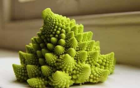 Романеско - капуста удивительная на вид, словно попавшая на Землю с далекой планеты вроде