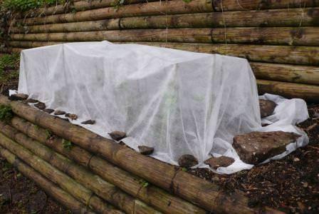 Практически каждый садовод на своем участке имеет как минимум пару видов растений рода Шиповник, но далеко не каждый знает, как правильно укрыть розы на зиму