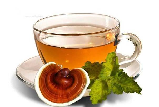 В сушеном и измельченном виде гриб заваривают как чай, также применяют настойки и экстракты