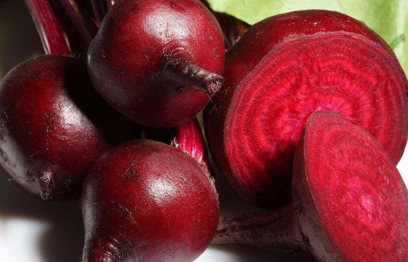 Свёкла сорта Красный шар улучшенный известна высокой урожайностью и быстрым формированием клубней