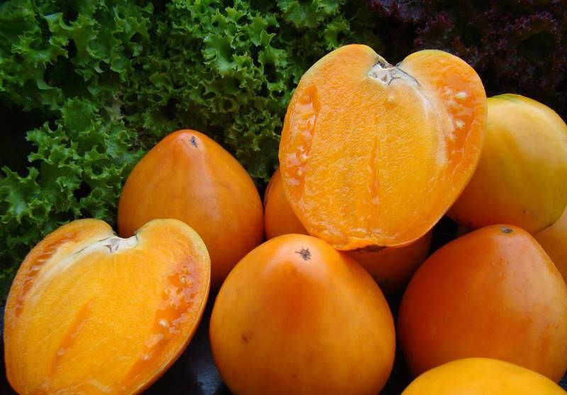Плоды томатов Хурма считаются низкокалорийными, в их составе много каротина и почти нет органических кислот