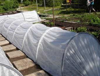 Парник устанавливается над грядками с уже посеянными семенами или высаженной рассадой