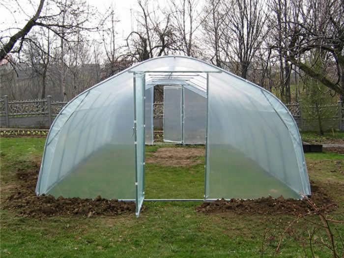 Пленочные теплицы дают отличную возможность для получения высокого урожая в холодном климате