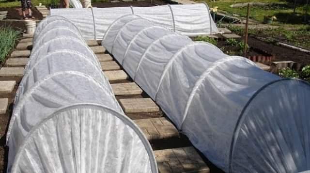 Трубы ПНД, используемые для строения – прочные и жесткие, устойчивые к коррозии