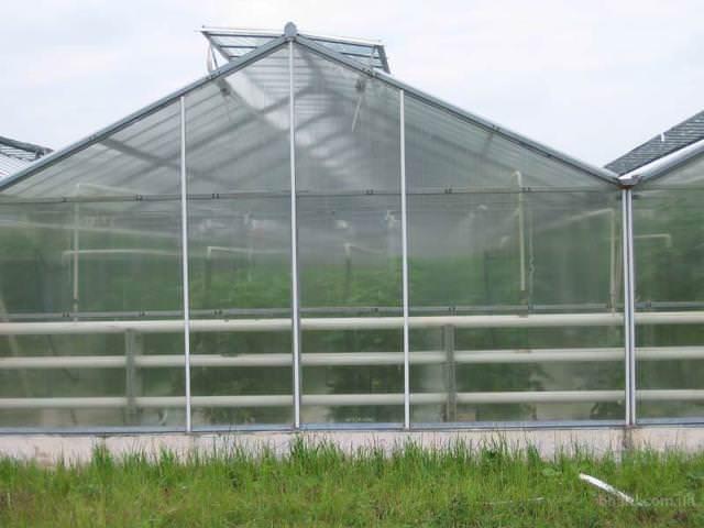 Сотовый поликарбонат представляет собой пластик ячеистой структуры, у которого «соты», содержащие внутри себя воздух, расположены по всей площади листа