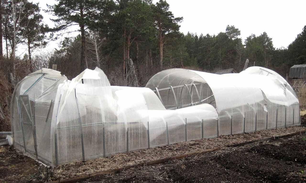 Экономить на качестве накрывного материала не стоит, так как приобретение некачественного или фальсифицированного сотового поликарбоната способно значительно сократить срок эксплуатации теплиц и парников