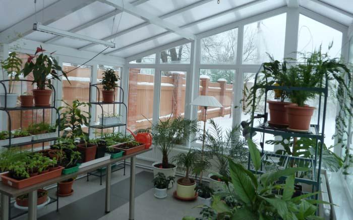 Современный зимний сад – это лучшее решение для зоны отдыха в условиях современной урбанизации