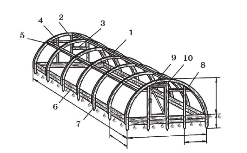 Арочный каркас теплицы: 1 - коньковый брус; 2 - стойка; 3 - форточка; 4 и 5 - распорки; 6 - основание теплицы; 7 - колышек; 8 - дуга; 9 - дверь; 10 - стойка