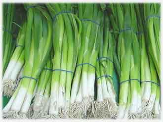 Как выращивать зелень в теплице круглый год (бизнес идея)
