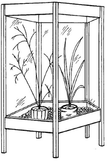 Размеры приобретаемой теплицы следует выяснить заранее, поскольку она может не поместиться на балконе
