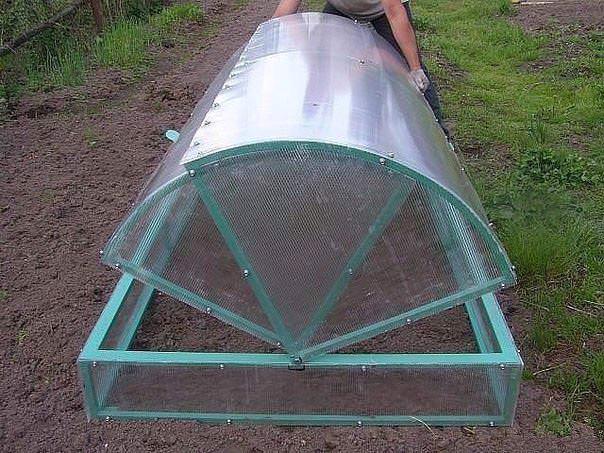 Важными особенностями такого парника является наличие арочной крыши, которая открывается с разных сторон и способствует облегчению обслуживания