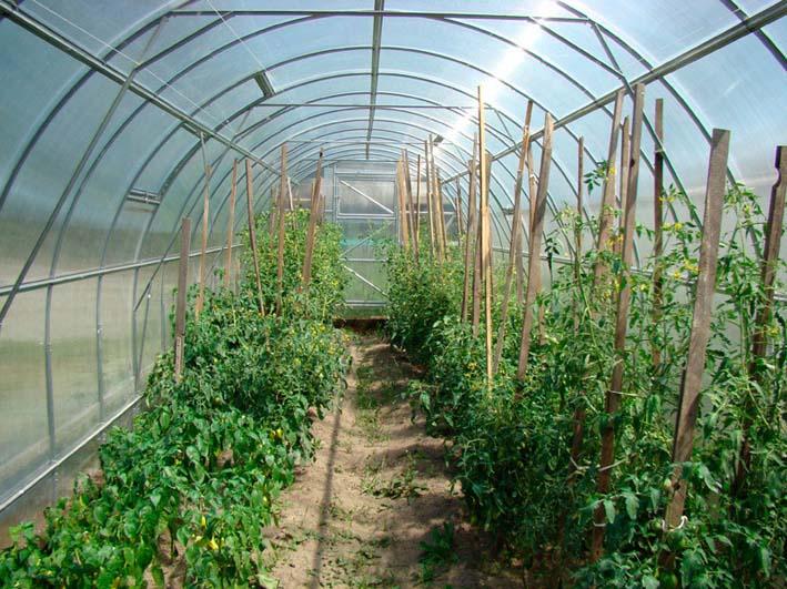 Строение «Урожай ПК» имеет внутреннее усиление каркаса. Возможна установка дополнительных дверей и форточек.