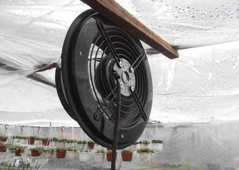 Электрическая система вентиляции имеет много поклонников