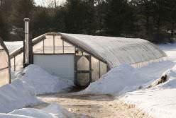 Зимний вариант тепличных конструкций менее популярен у российских огородников