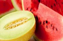 Основные правила выращивания тепличных арбузов и дынь