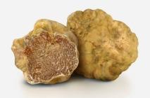 truffle12